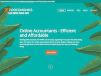 Online Accountant for limited company